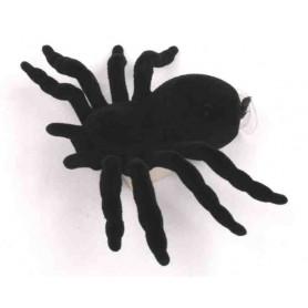 Spider cache container