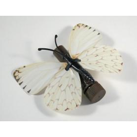 Vlinder cache - 28