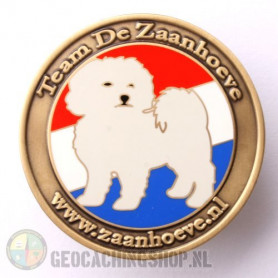 Zaanhoevegeo coin - antique gold LE