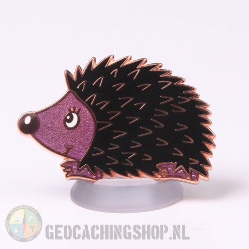 Hedgehog Dordogne